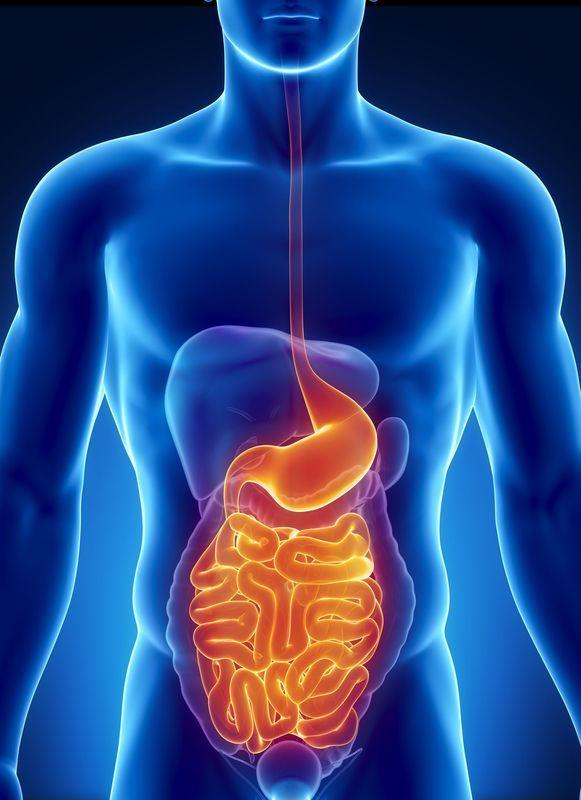 Cirugia gastrointestinal