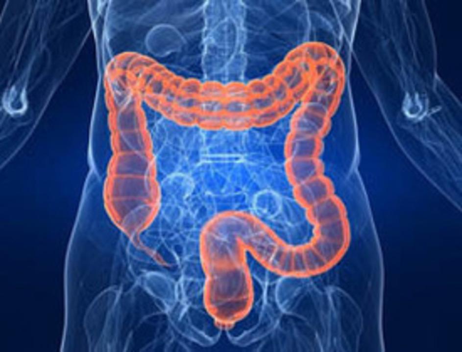 Doc preview cirug a colon y recto