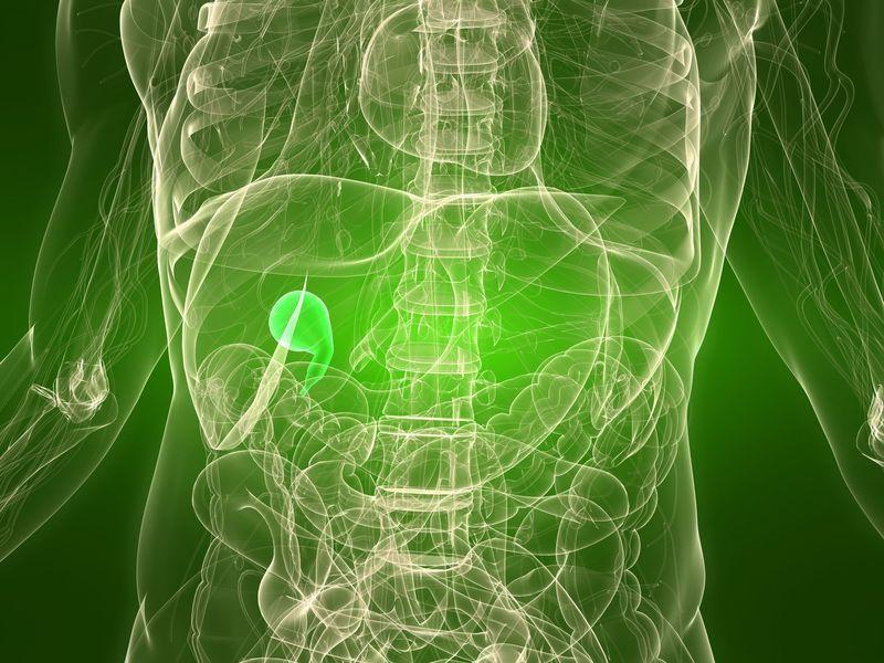 Cirugia de vesicula, cirugia de hernias,