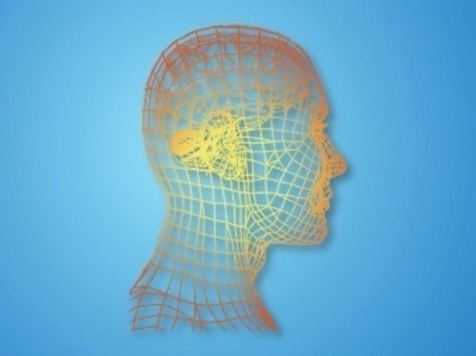 Doc preview psicologia moderna rasgos faciales vector 21 25215679