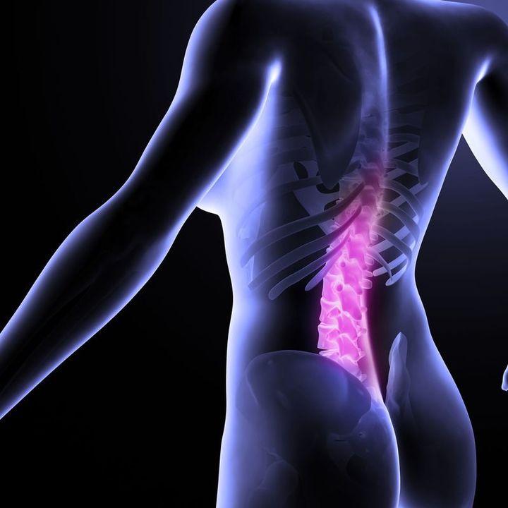 Doc preview 123 espalda baja