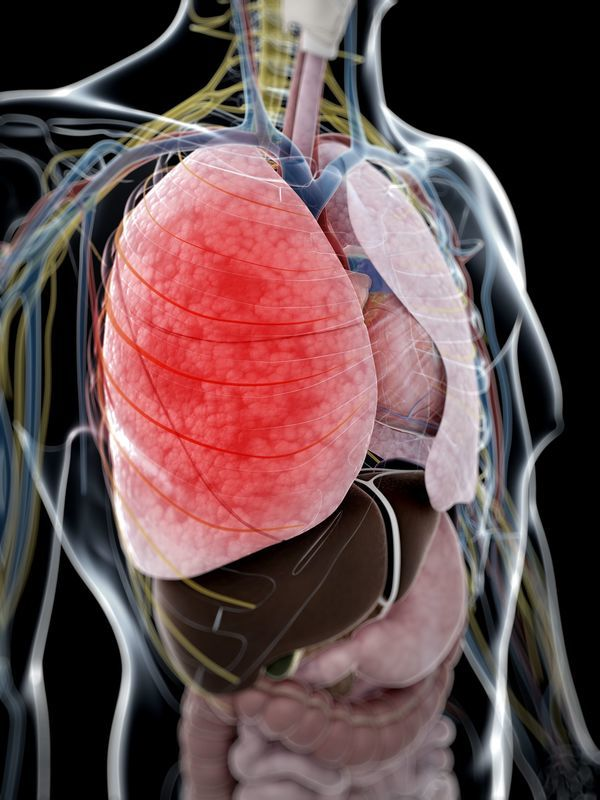 Problemas Pulomonares y Paros Respiratorios.