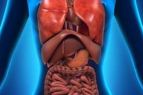Tip list 123 sistema digestivo mujer