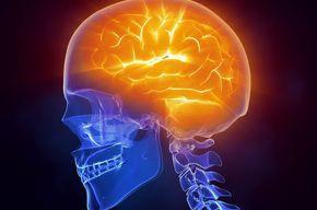 Tip_list_cerebro
