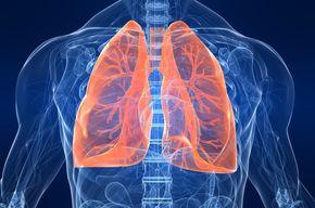 Tip list pulmones